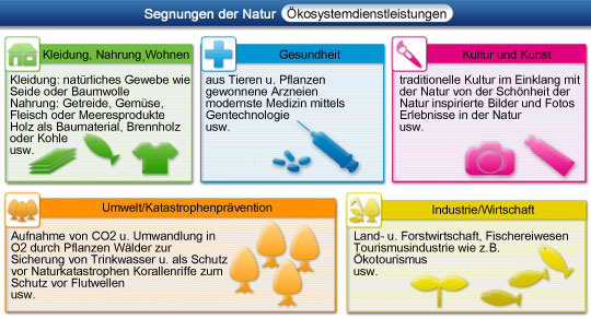 Bewertung der ökosysteme die ökosystemdienstleistungen die